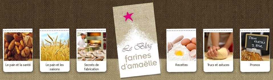 entete-blog-farine-d-amaelle